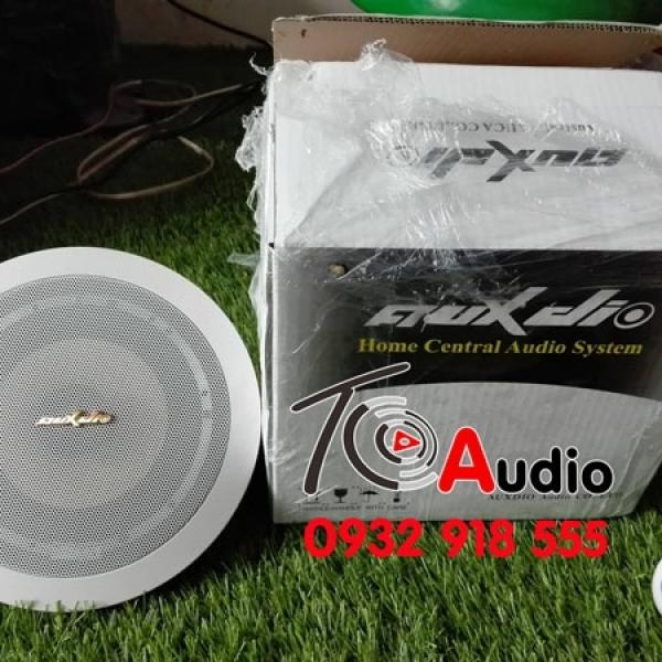 Loa âm trần AUX DIO 168 công suất 20w dùng cho nghe nhạc nhẹ