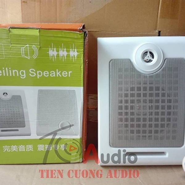 Loa hộp10w APU SP10 chuyên dùng nghe nhạc và thông báo
